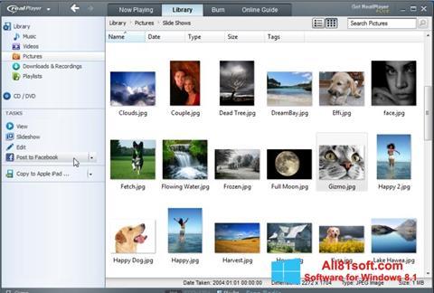 截圖 RealPlayer Windows 8.1